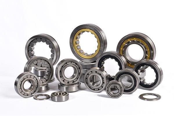 compatible bore diameter: Dodge 039852 Bearing Seals